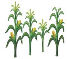 Thanksgiving Corn Field Clipart.