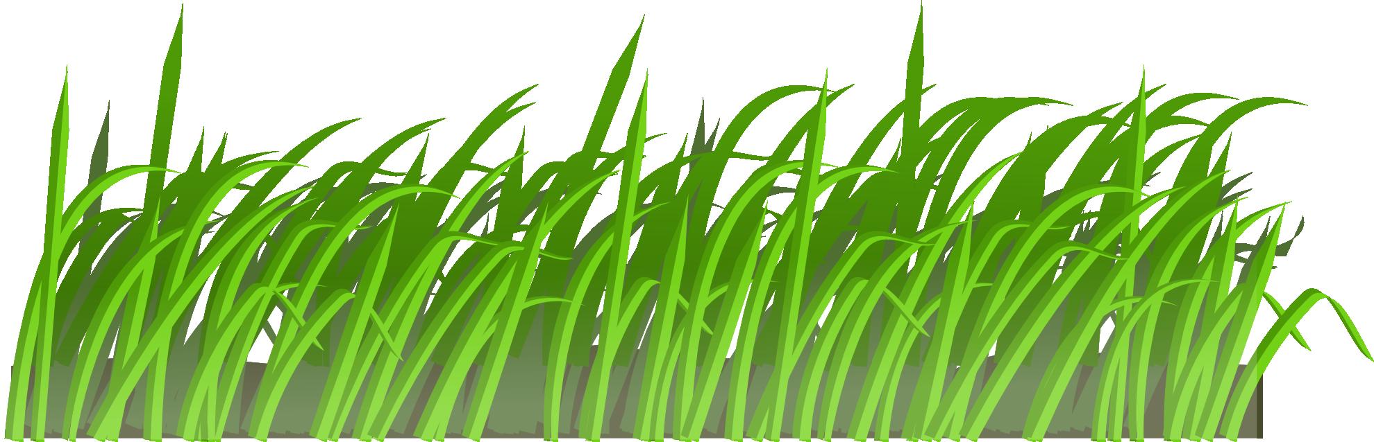 Green Grass Eight.