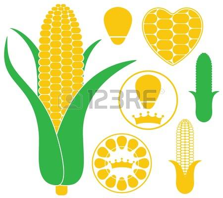 Corn Silhouette Stock Vector Illustration And Royalty Free Corn.