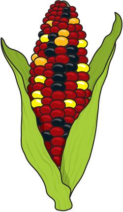 Corn Harvest Clipart.