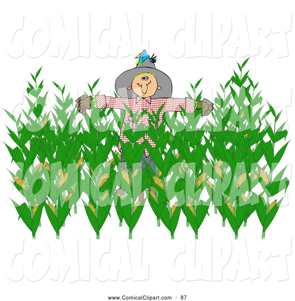 corn harvest clipart clipground