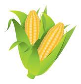 Corn Husk Clip Art.