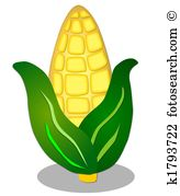 Corn husk Clip Art and Stock Illustrations. 122 corn husk EPS.