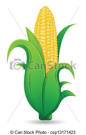 Corn husk Vector Clipart Illustrations. 261 Corn husk clip art.