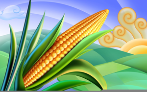 Clipart Corn Roast.