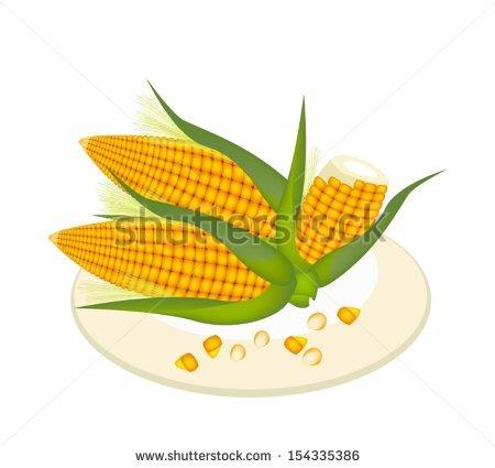 Corn Silk Stock Vectors & Vector Clip Art.