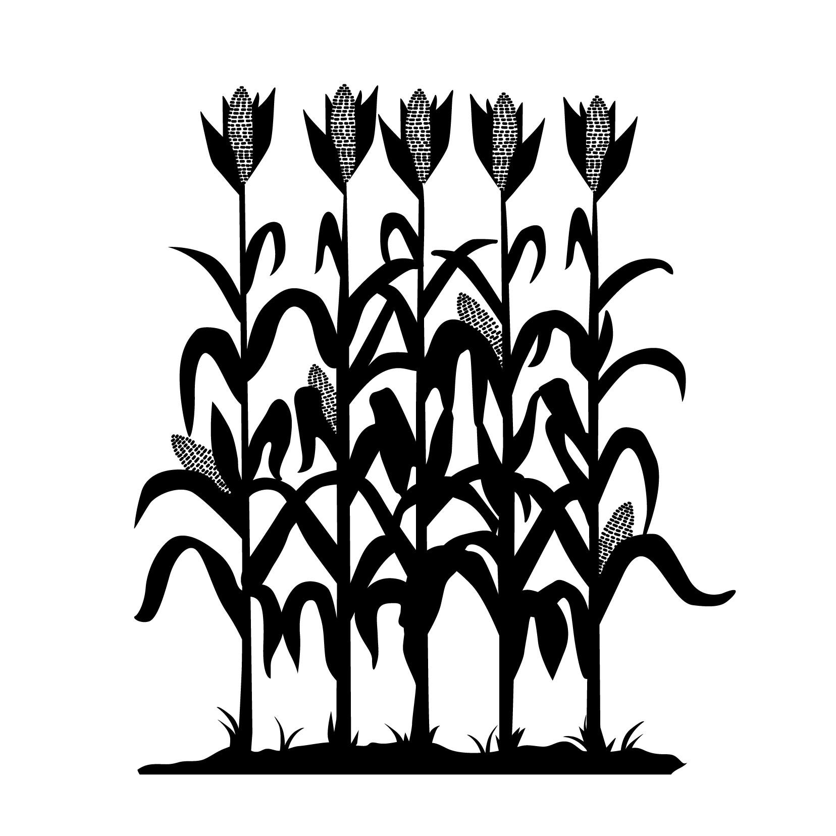 corn stalk silhouette ...