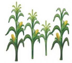 Free Corn And Soybeans Crop Silhouette Clipart.