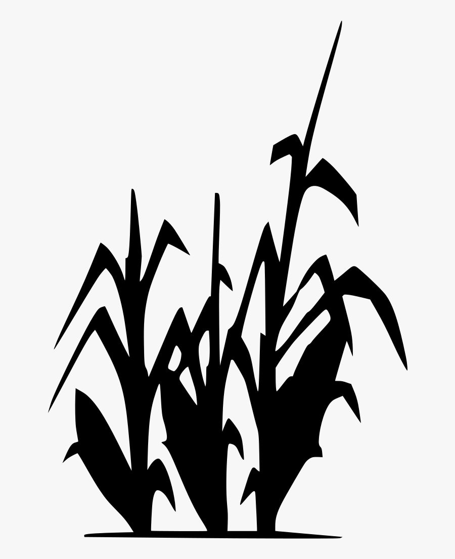 Cornfield Drawing Grain Field Transparent Png Clipart.