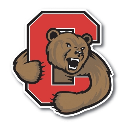 Cornell University Vinyl Decal / Sticker ** 4 Sizes **.
