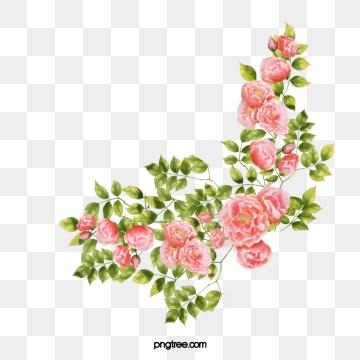 Corner Flower PNG Images.