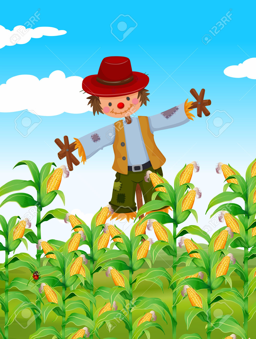 Scarecrow Standing In Corn Field Illustration Royalty Free.