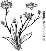 Cornflower Clipart and Stock Illustrations. 1,465 Cornflower.