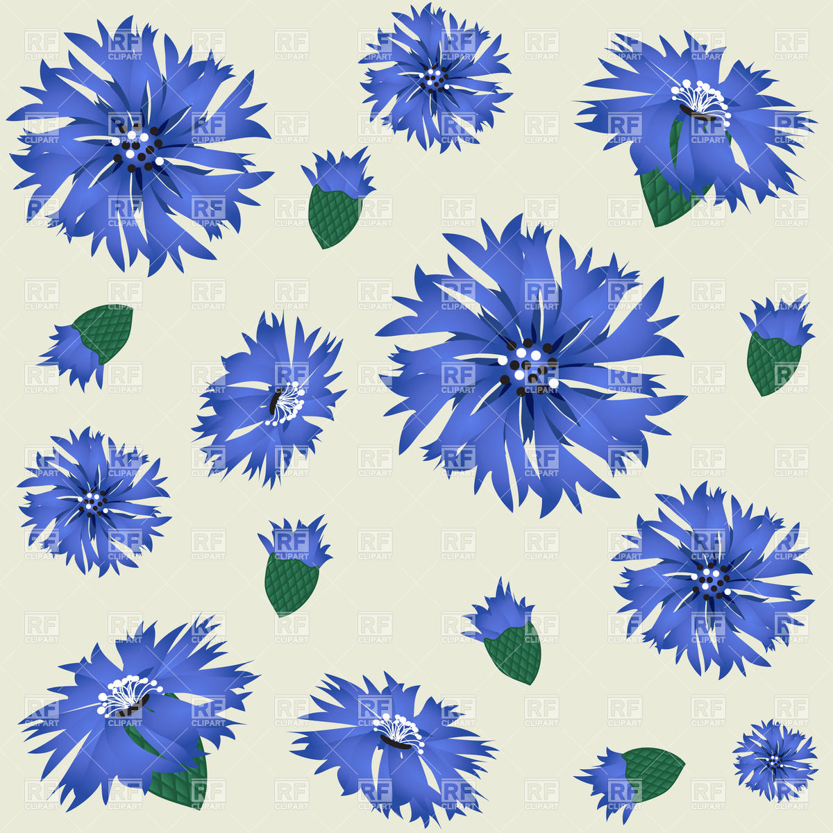 Cartoon isolated cornflowers Vector Image #24403.