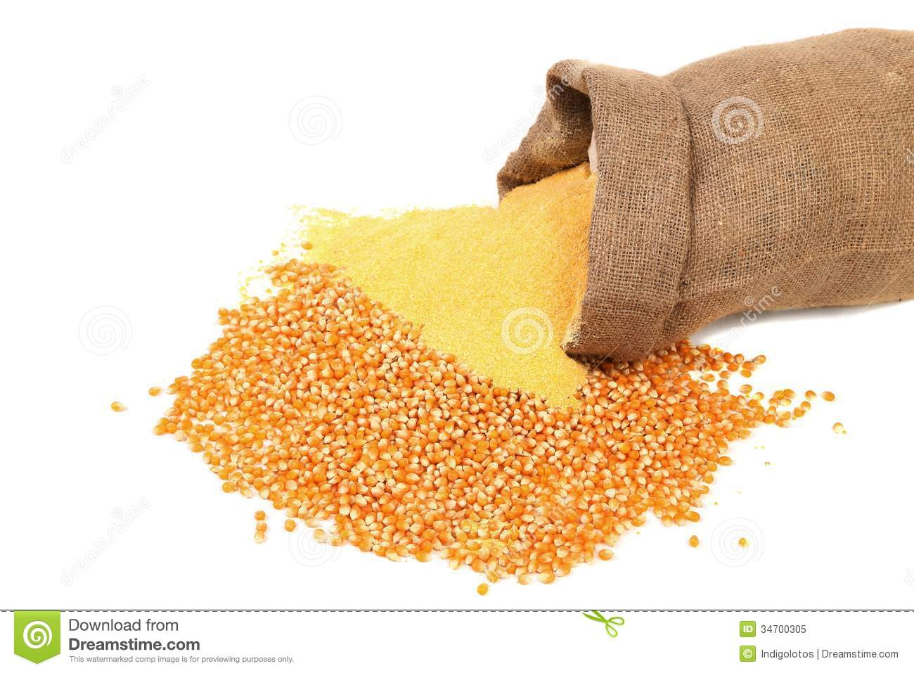 Corn Meal And Grain In Bag Royalty Free Stock Photo.