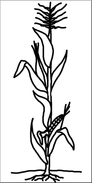 Clip Art: Cornstalk B&W I abcteach.com.
