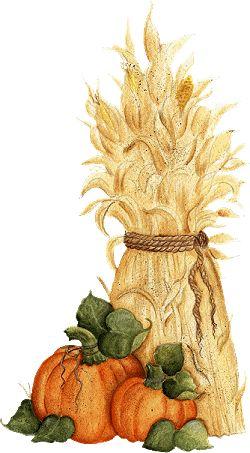 1000+ ideas about Corn Stalks on Pinterest.