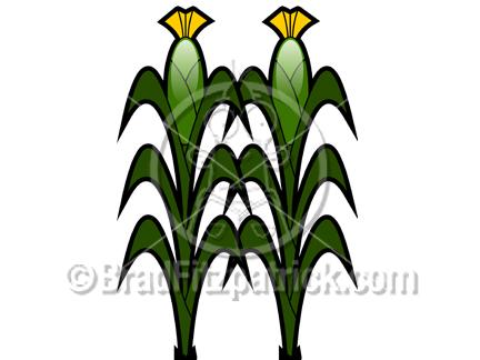 cornstalks clipart clipground