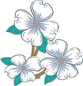 Clipart of Flowering Dogwood or Cornus florida vintage engraving.