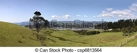 Stock Photo of Meadows and hills on the Coromandel Peninsula.