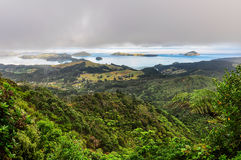 Coromandel Coast, New Zealand Stock Photos.