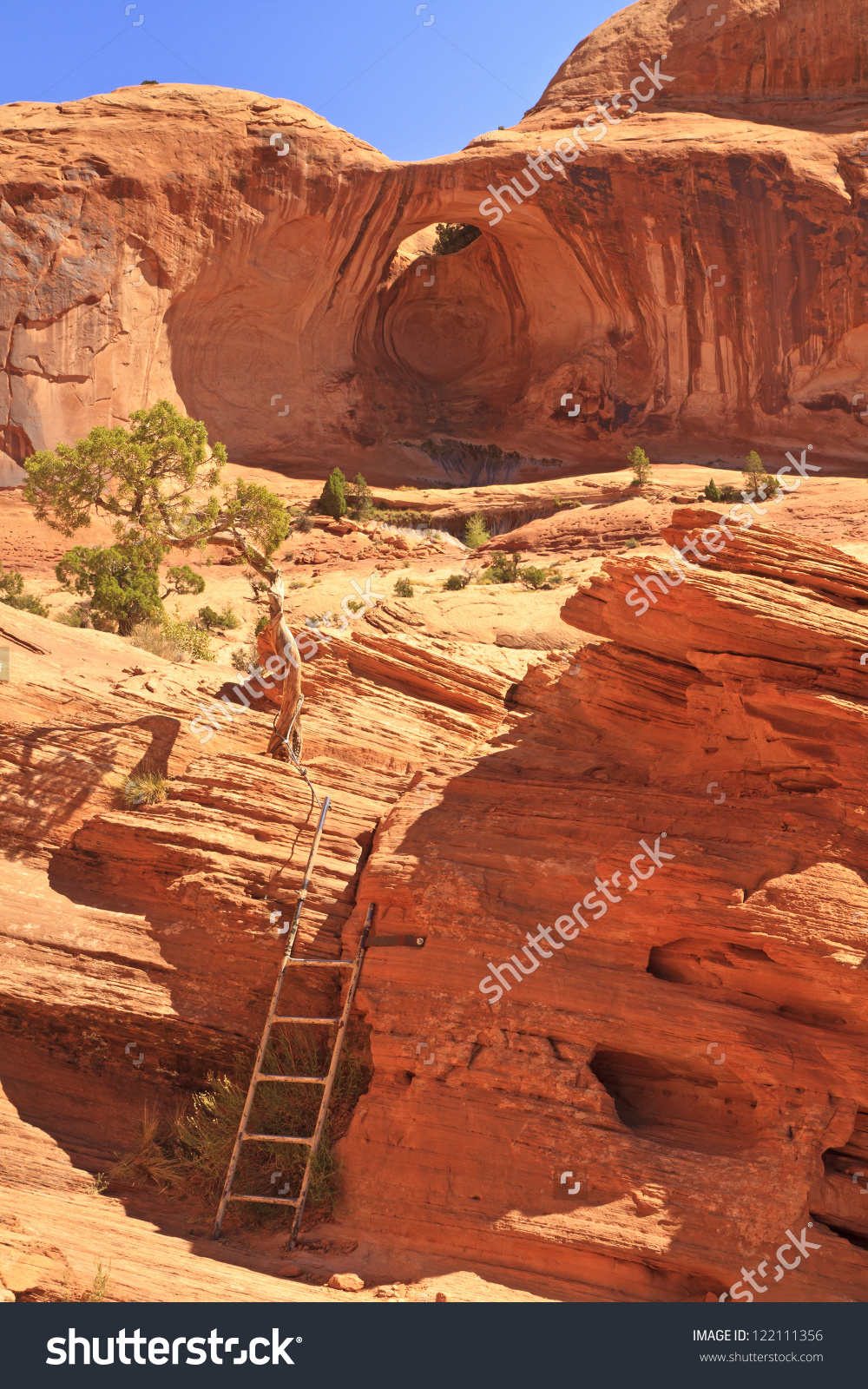 A Ladder On The Trail To Corona Arch On The Slickrock In Front Of.