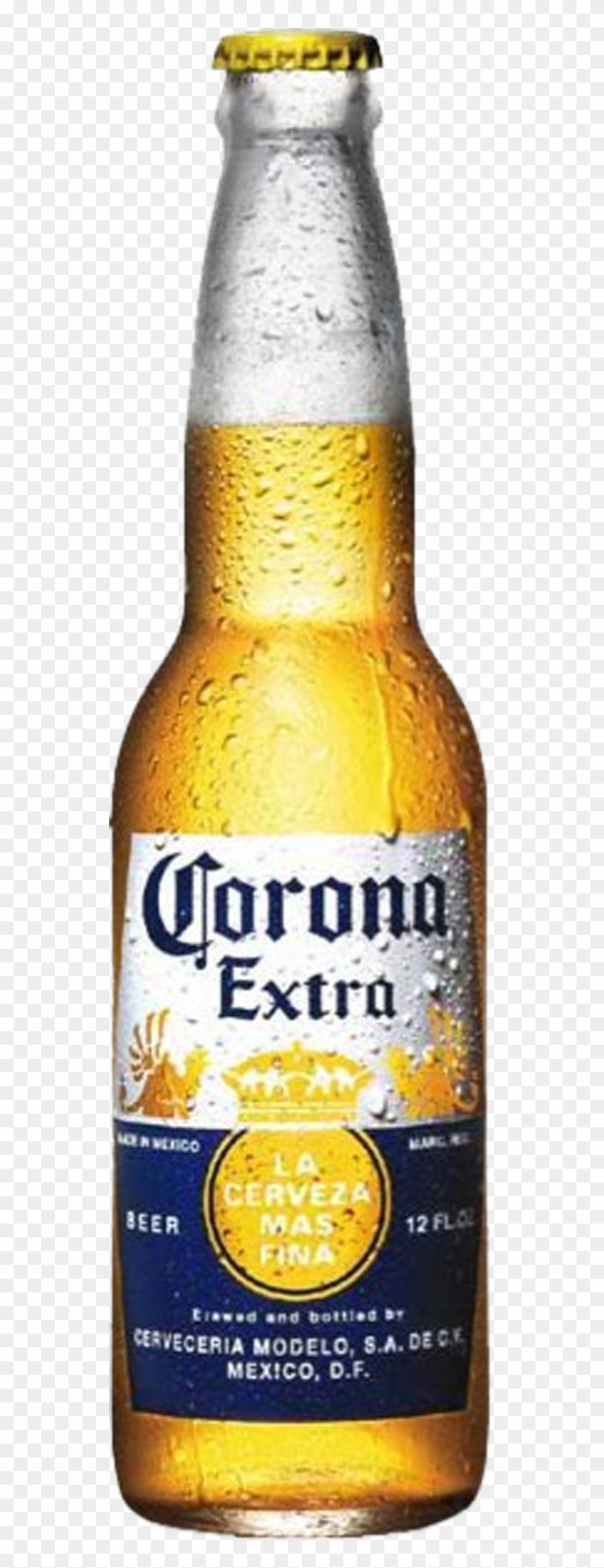 Corona Extra Clipart Bucket Beer.