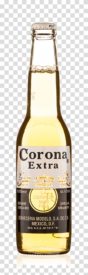 Corona Extra bottles and bucket , Lager Corona Beer Wine.