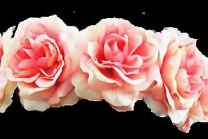 Corona de flores png tumblr 1 » PNG Image.