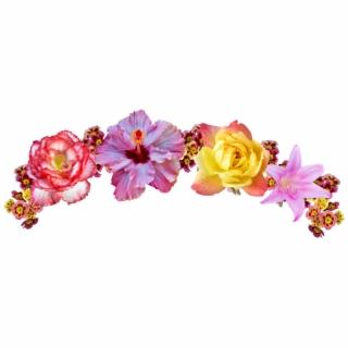 corona #coronaderosas #rosas #roses #crown #crownofroses.