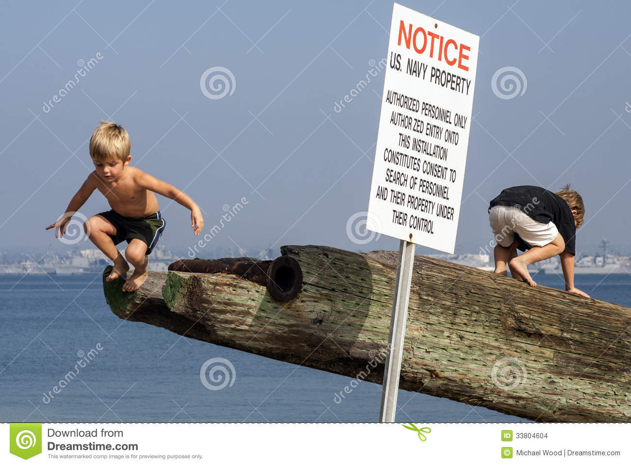 Young Brothers Exploring Stock Images.