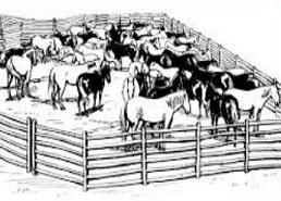 Free Corral Clipart.