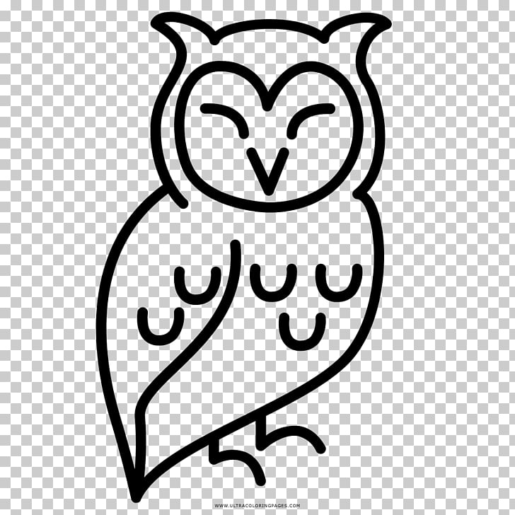 Drawing Coloring book Little Owl Black and white, coruja PNG.