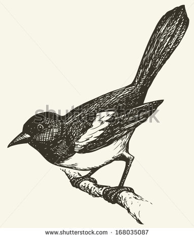 Corvidae Stock Vectors, Images & Vector Art.