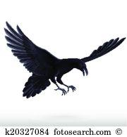 Corvus Clip Art Vector Graphics. 134 corvus EPS clipart vector and.