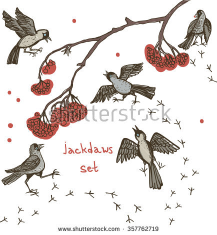 Monedula Stock Vectors & Vector Clip Art.