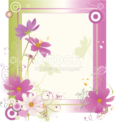 Cosmos Flower Cosmea Background stock vector art 165669214.