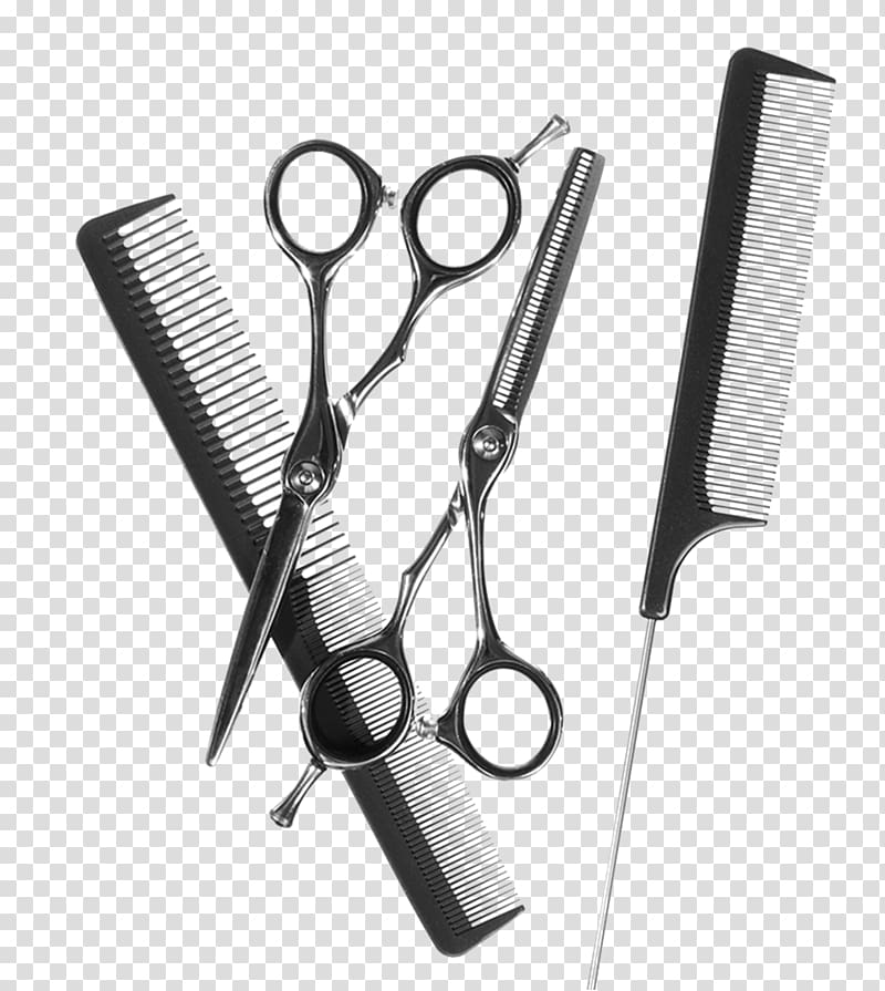 Tool Comb Cosmetologist Cosmetology Beauty Parlour, hair.