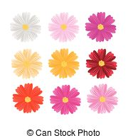 Cosmos bipinnatus Clip Art and Stock Illustrations. 75 Cosmos.