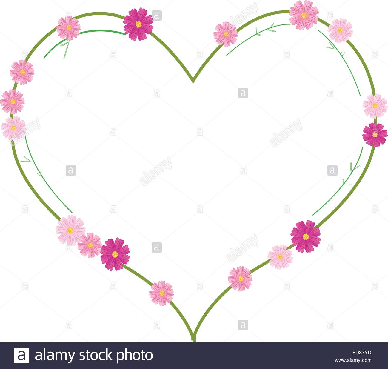 Love Concept, Illustration Of Pink Cosmos Flowers Or Cosmos Stock.