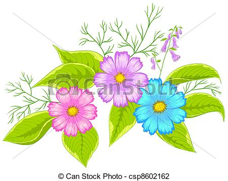 Clip Art of Flower cosmos, isolated.