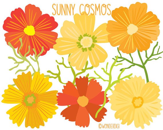 Cosmos Flower Clipart 20 Free Cliparts Download Images