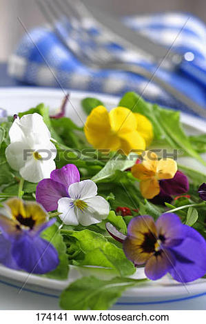 Stock Photography of Edible flowers :wild pansy,cosmos and.