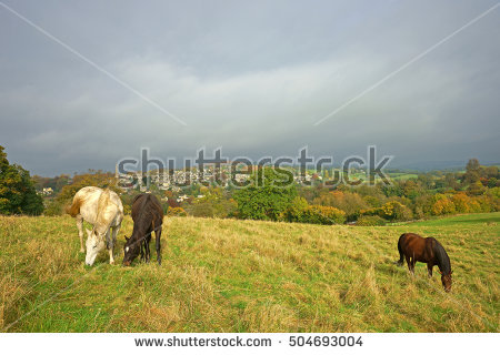 Cotswold Property Stock Photos, Royalty.