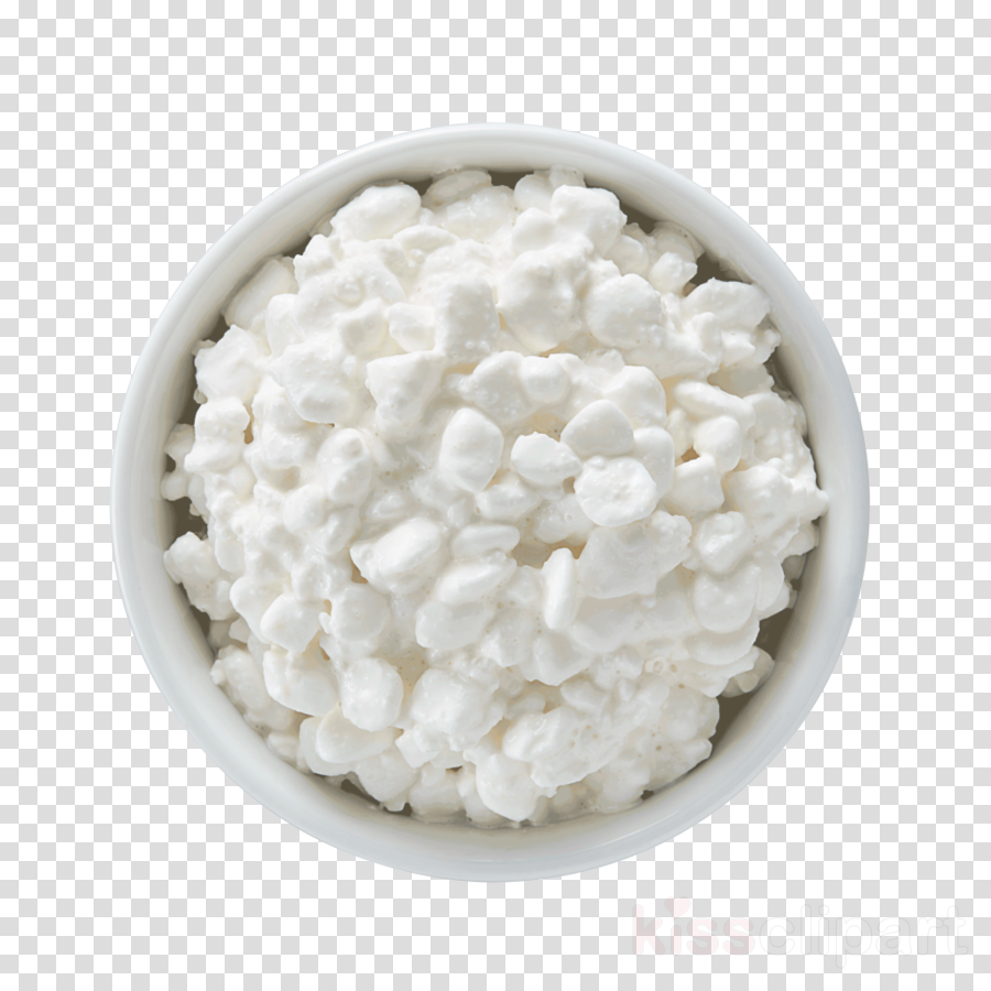 white food cottage cheese cuisine dish clipart.