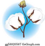 Cotton Clip Art.