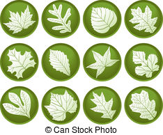 Cottonwood Illustrations and Clipart. 59 Cottonwood royalty free.