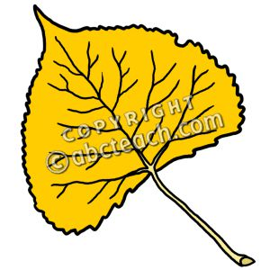 Cottonwood Clipart.