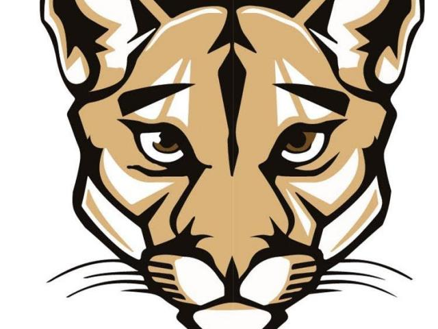 Cougar clipart cool, Cougar cool Transparent FREE for.
