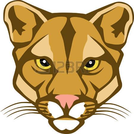 Show Face Cougar Clips